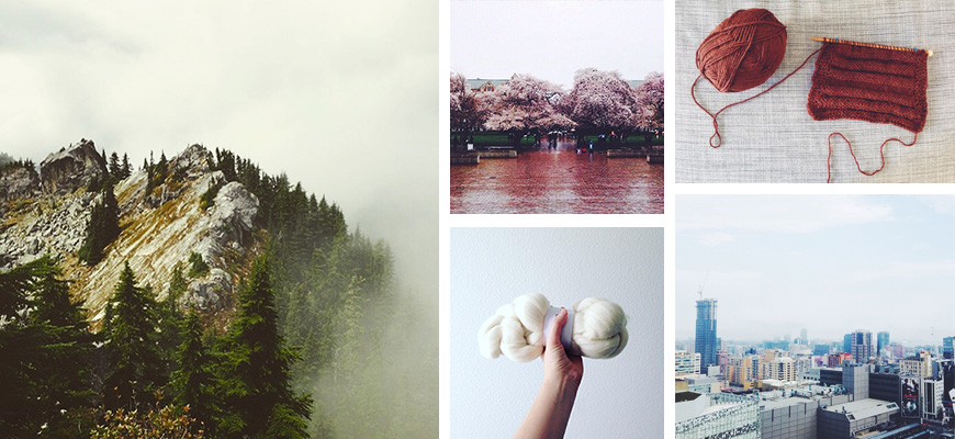 A grid of photos, including a foggy mountain top, cherry blossoms on trees, knitting, a hand holding up wool roving, and Toronto skyline