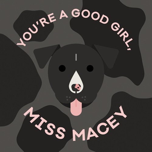 An illustration of my friend's dog's face, surrounded by you're a good girl, Miss Macey